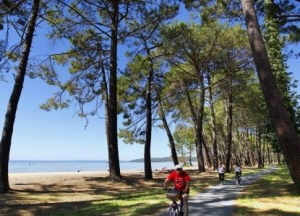 Family cycling in Biscarrosse image