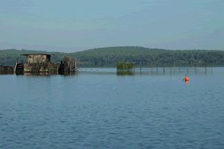 Lac d'Aureilhan