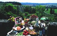 Gourmet Gascony