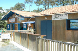 Oyster shack Hossegor