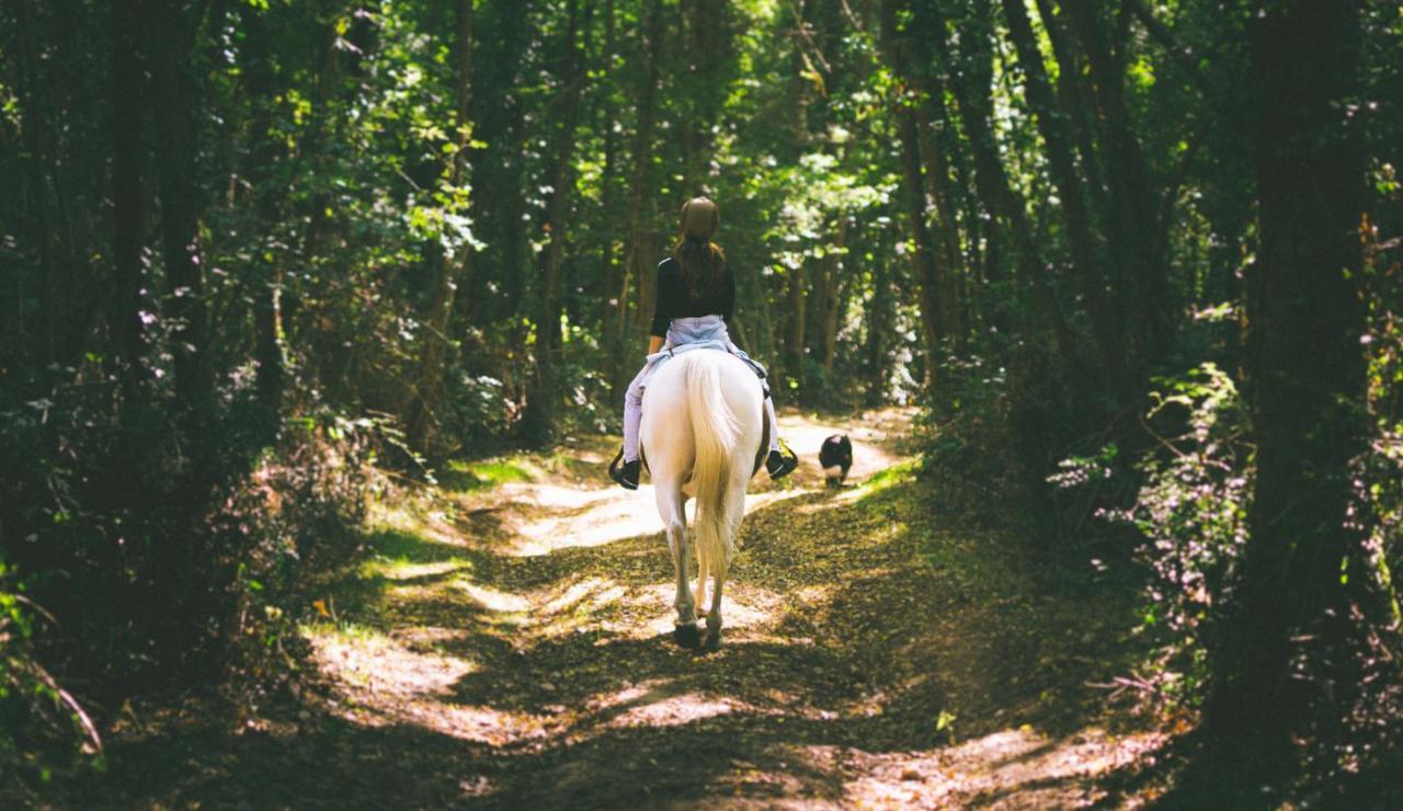 pony-trekking-lacanau-credit-to-medoc-ocean