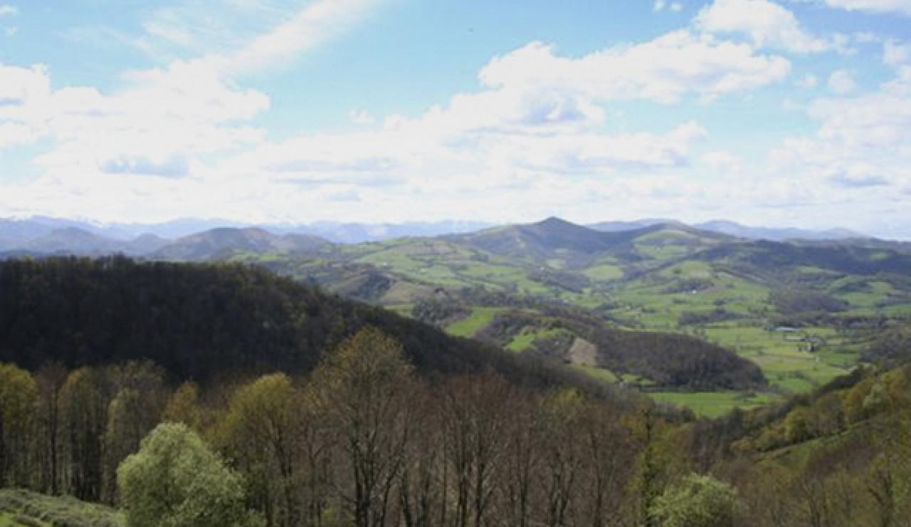 landscape-view