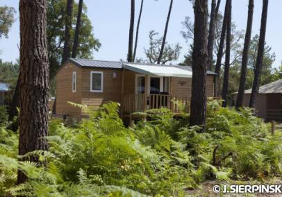 fram-nature-2-bed-bungalow-4-6-pers-image
