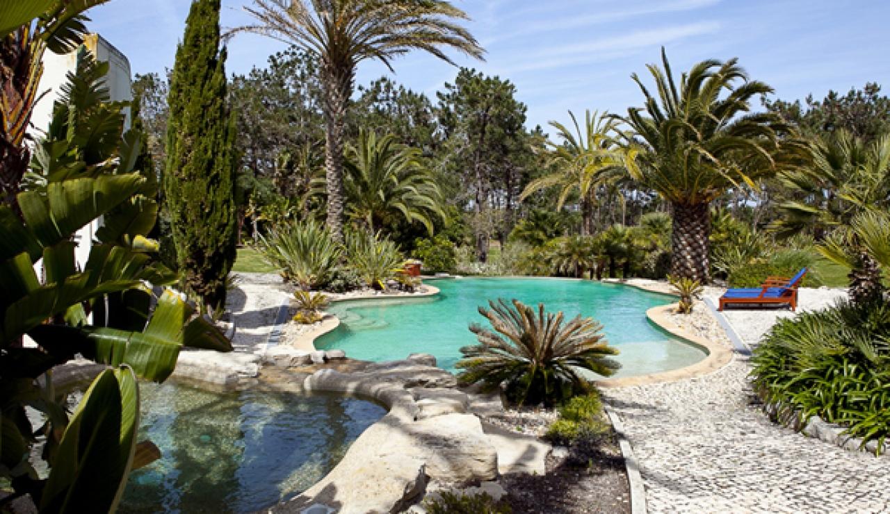 villa-palmeiras-image-2