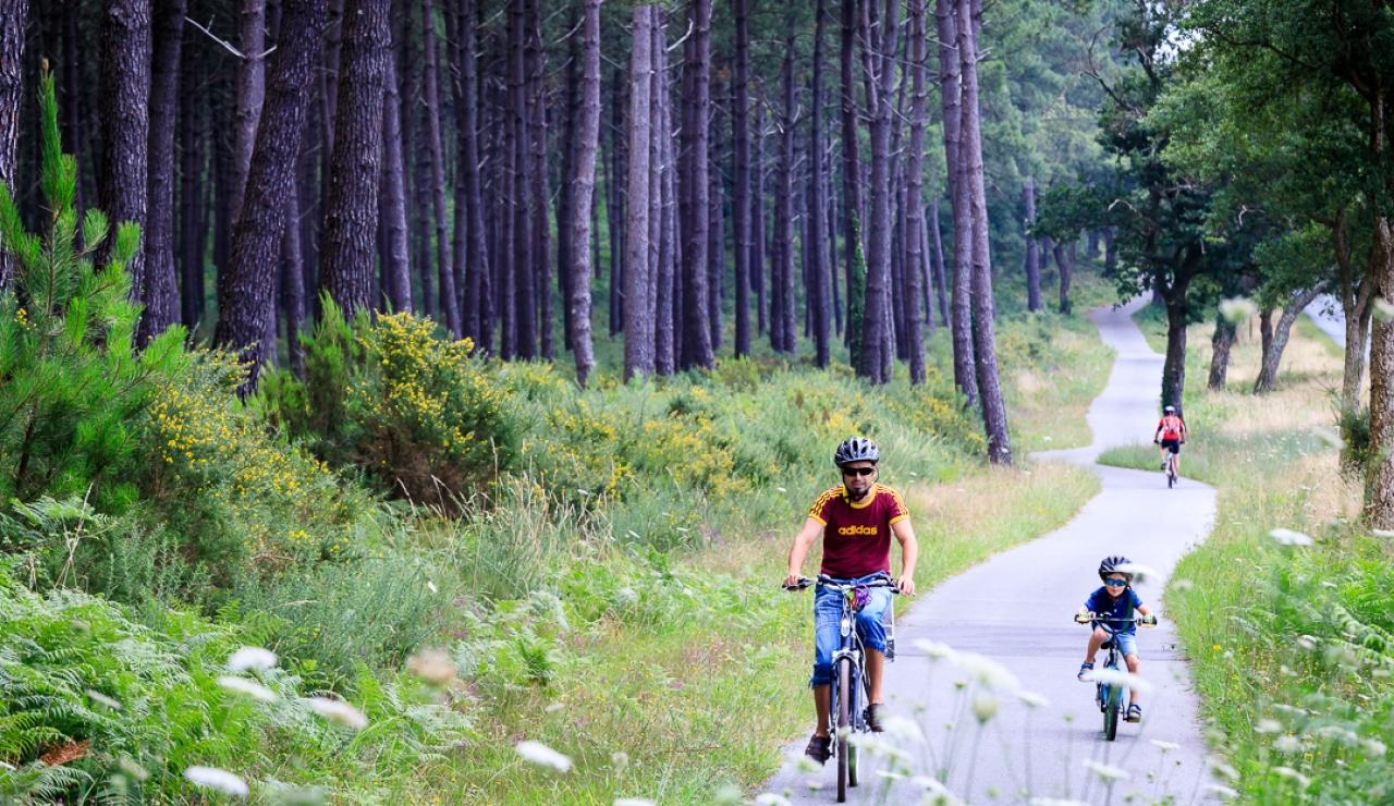 cycle-paths-capbreton-hossegor-seignosse