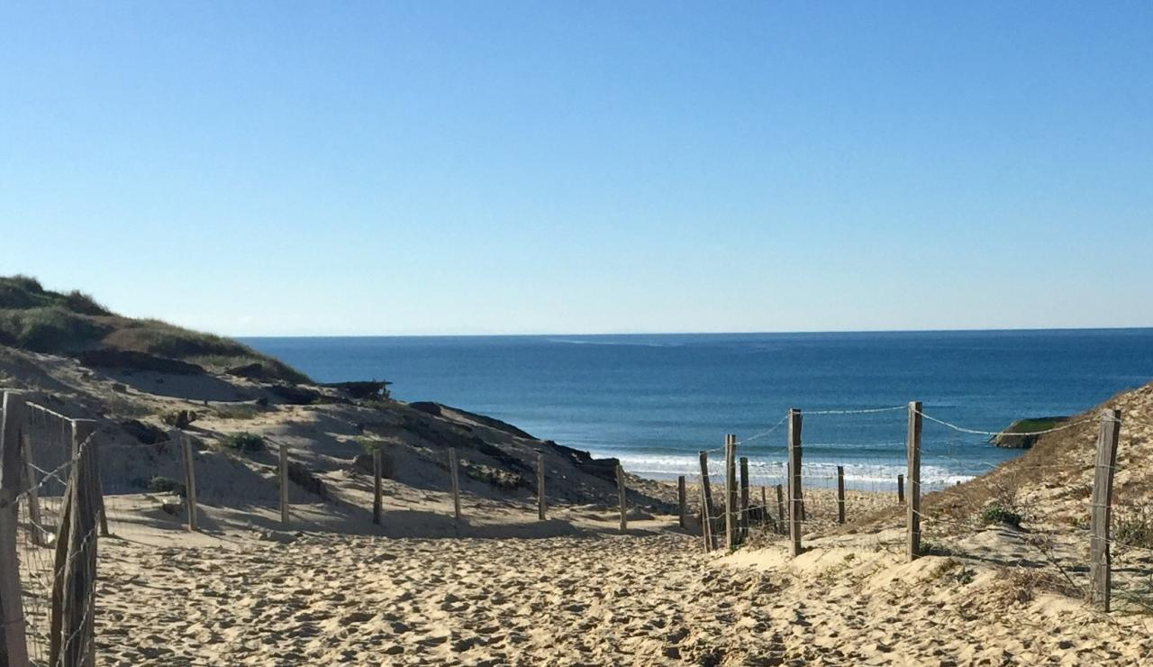 capbreton-dune