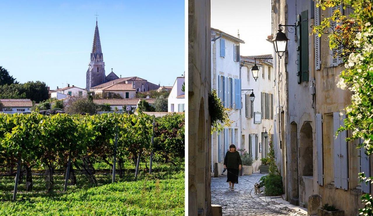 les-vignes-de-la-chapelle-vine-suites-image-20