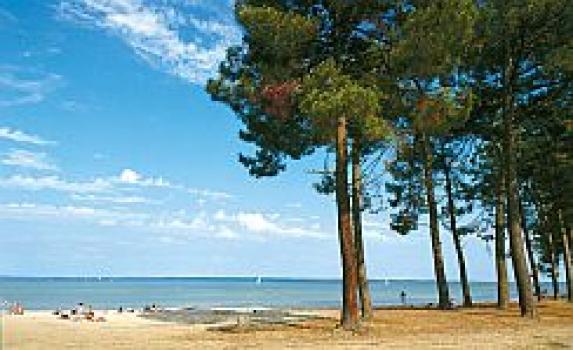 Biscarrosse lake holidays